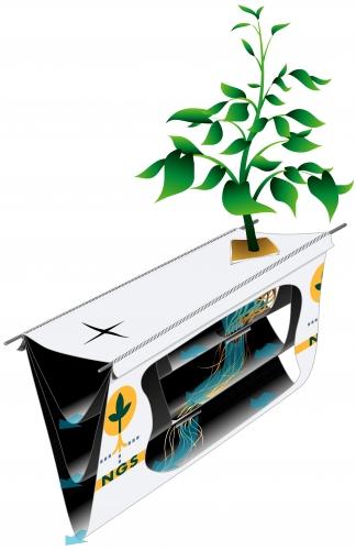 sistema-de-hidroponía-NGS