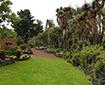 jardin-botanico-unam