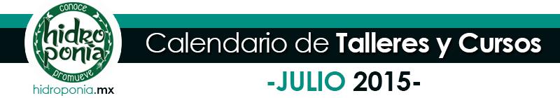 Cursos Julio