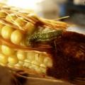 gusano de maíz