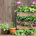 jardin_vertical_pallets
