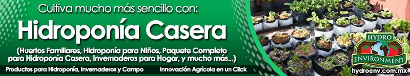 Banner 01 Hidroponía Casera