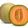 semillas_de_melón