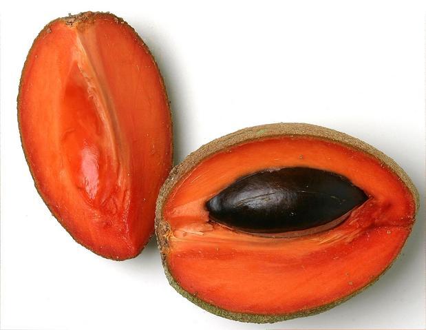 Receta saludable de jugo de mamey con agua de coco: Nutritiva y refrescante