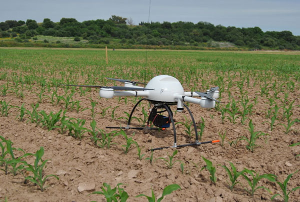 drones-arboles