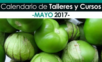 Eventos Mayo