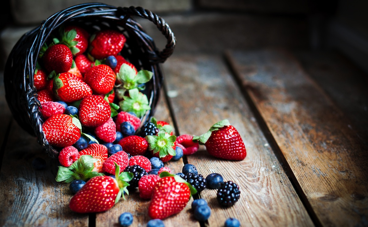 producción de berries