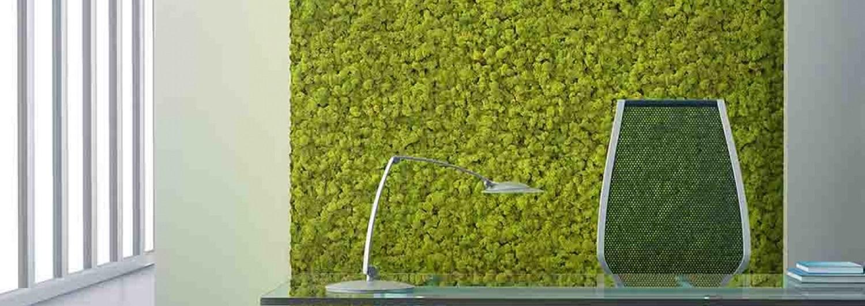 paneles de musgo