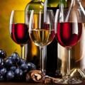 producción de vino en México